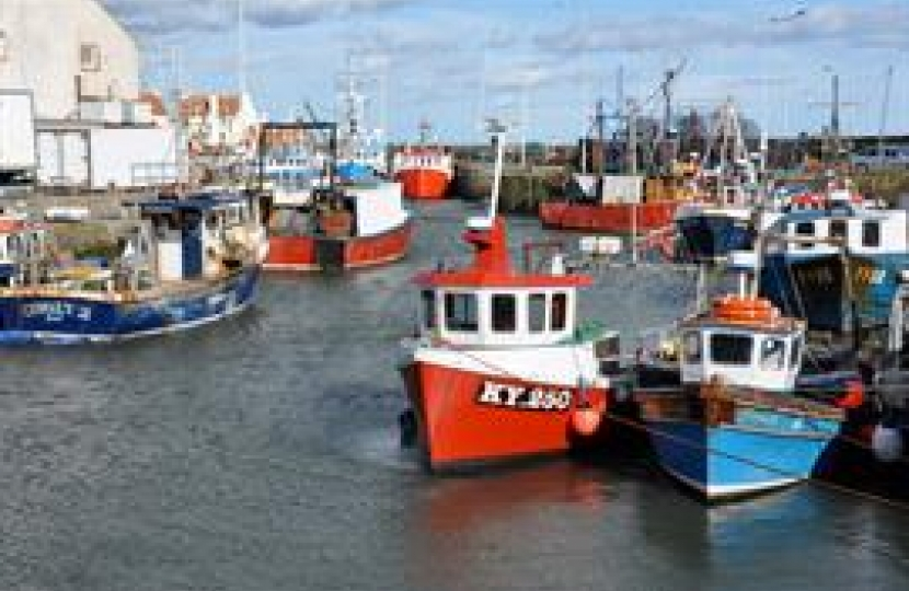 UK fish stocks